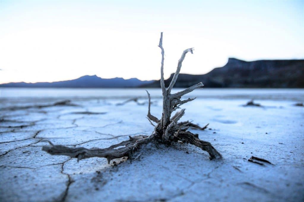 désert aride suite à la desctrution de l'environnement par l'homme